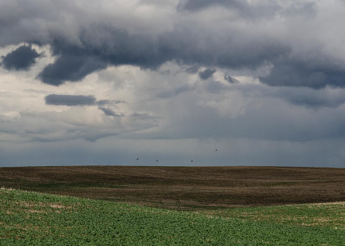 Prairie Simplicity V